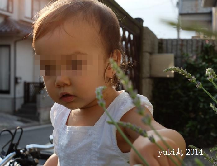 20140531rosemitsukie26s